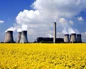Řepkové pole před jadernou elektrárnou