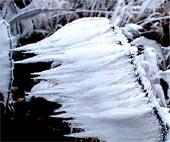 Zmrzlá voda na větvičce keře tvoří špičaté aerodynamické tvary